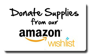 Donate Supplies From Our Amazon Wishlist Opens in new window